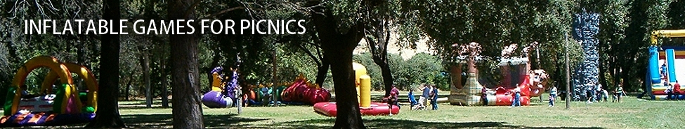 Bay Area Inflatable Games | Interactive Games | Picnic Planners